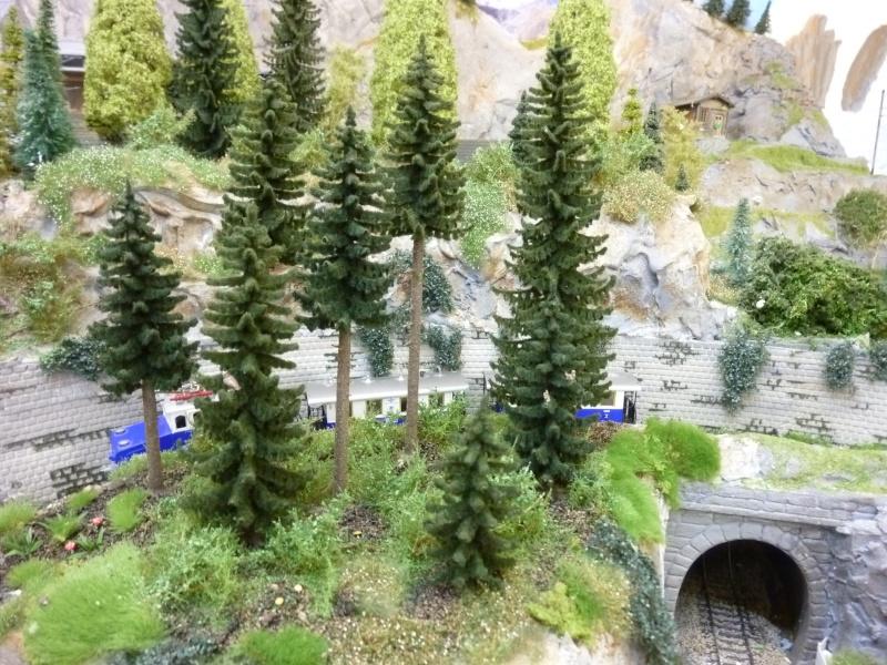 modfication montagne suite P1070910