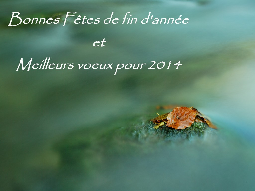 VOEUX 2014 Voeux_10