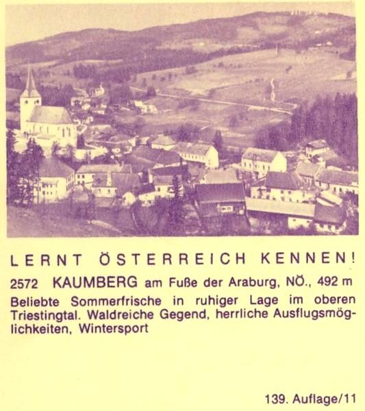 """schönes - Ganzsachen mit Wertstempel """"Schönes Österreich"""" P_446_21"""