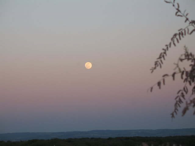 Eclipse de lune Photo_15