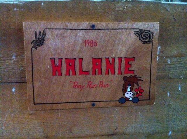 WALANIE (VANILLE) - ONC poney - adoptée en avril 2011 par voulk  - Page 6 17434110