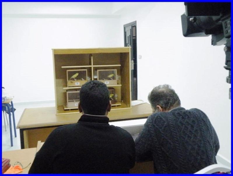 le 1er juge national confirmé (Zine Eddine Hrira) Juge_m12