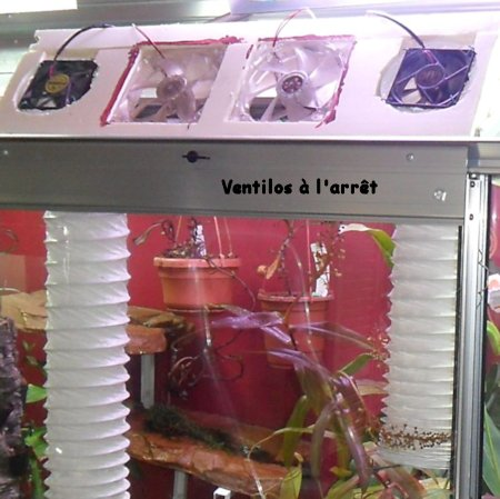Ma première serre adossée dans mon salon Ventil10