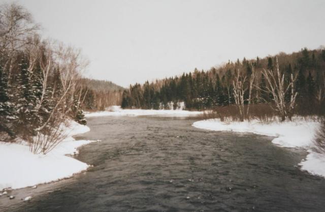 Photos du Canada (seulement pour Lilie et personne d'autre , hein !) Img_9814
