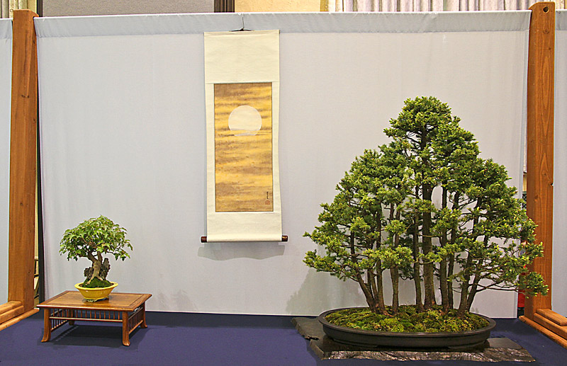 2014 41ST UPSTATE NEW YORK BONSAI EXHIBITION Rons-e10