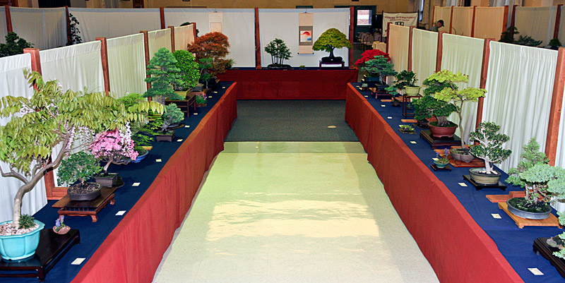 2014 41ST UPSTATE NEW YORK BONSAI EXHIBITION View-111