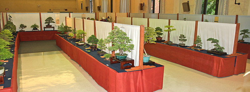 2014 41ST UPSTATE NEW YORK BONSAI EXHIBITION View-211