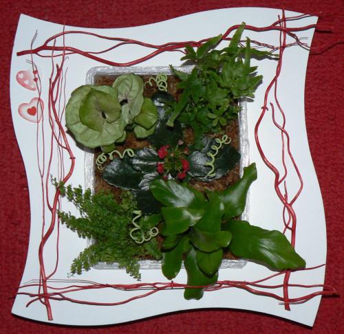 Tableaux, plantes et création - [résolu] Tablea10