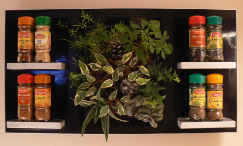 Tableaux, plantes et création - [résolu] Tablea11