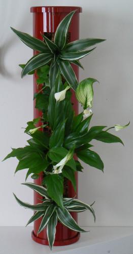 Tableaux, plantes et création - [résolu] - Page 2 Tube-v10