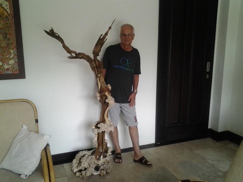 Bonsai exhibition in Tabanan, Bali 20131110