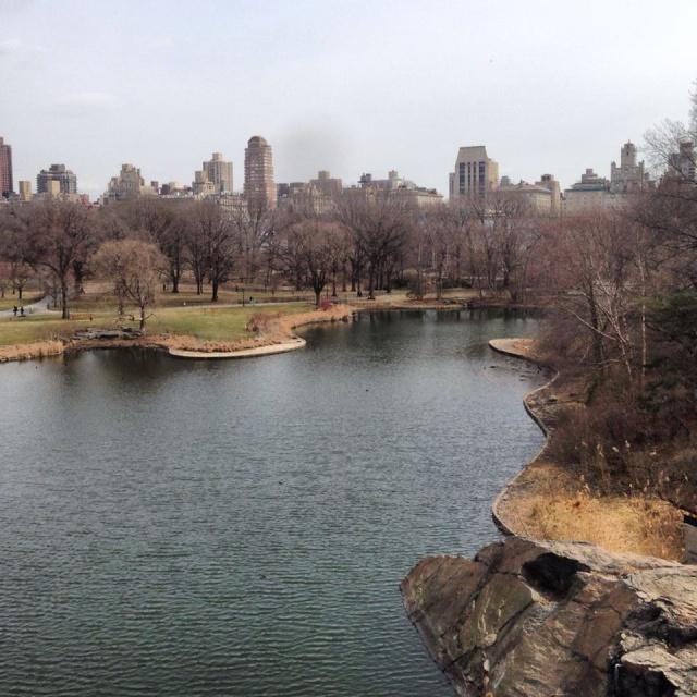 Un jour j'irais à New York avec toi - Page 3 10006910
