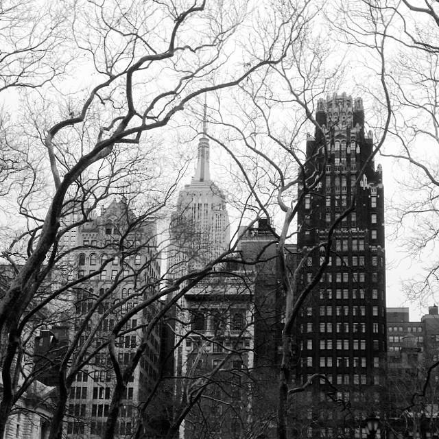 Un jour j'irais à New York avec toi - Page 2 19599710