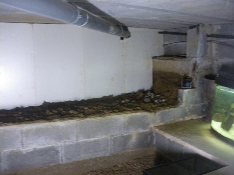 réaménagement de mon vide sanitaire Imgp2637