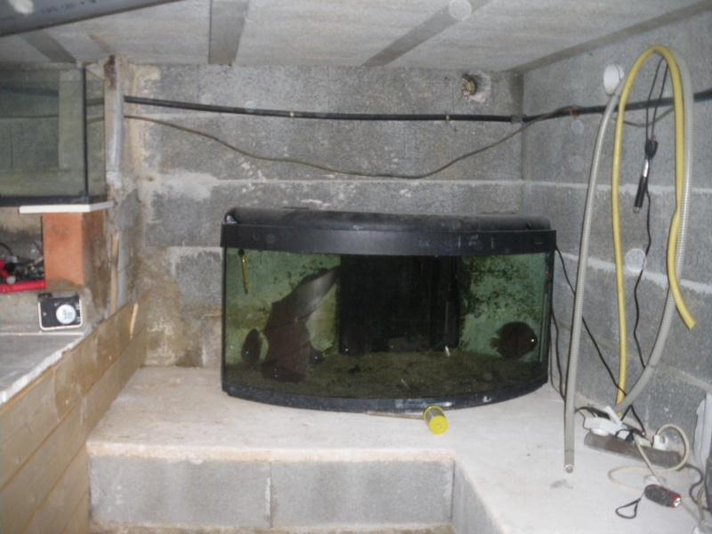 réaménagement de mon vide sanitaire Imgp2640