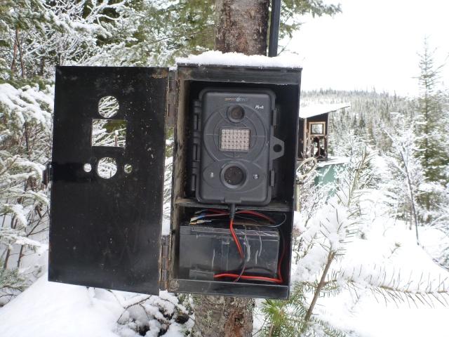 camera chasse  P1020210