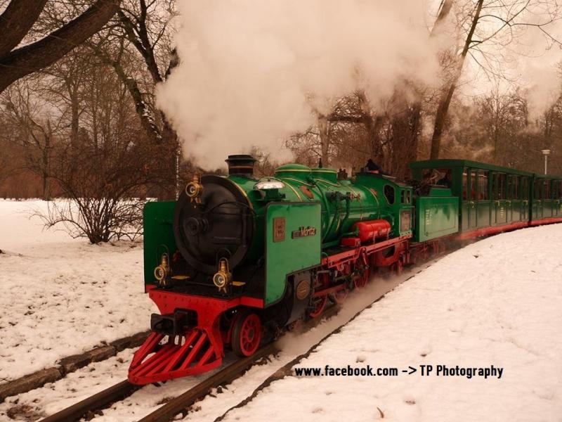 Die BR 03 in 12 1/4 Zoll - Martens'sche Einheitslok Moritz10