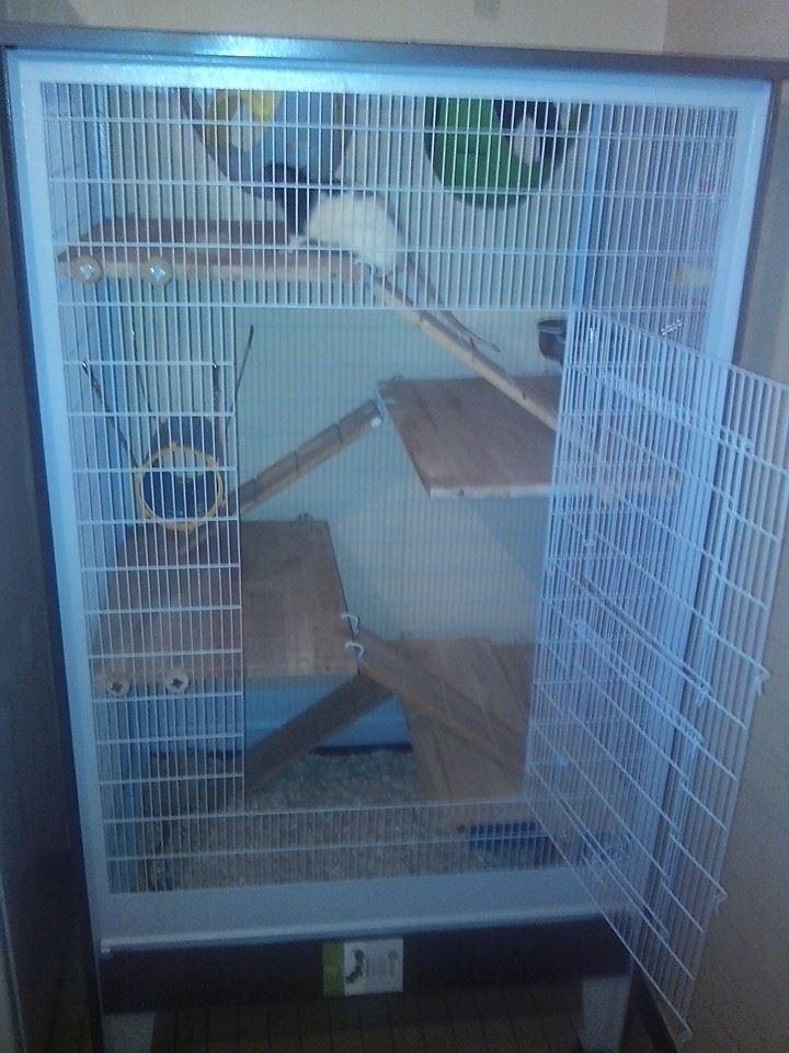 Ma nouvelle cage 94673610
