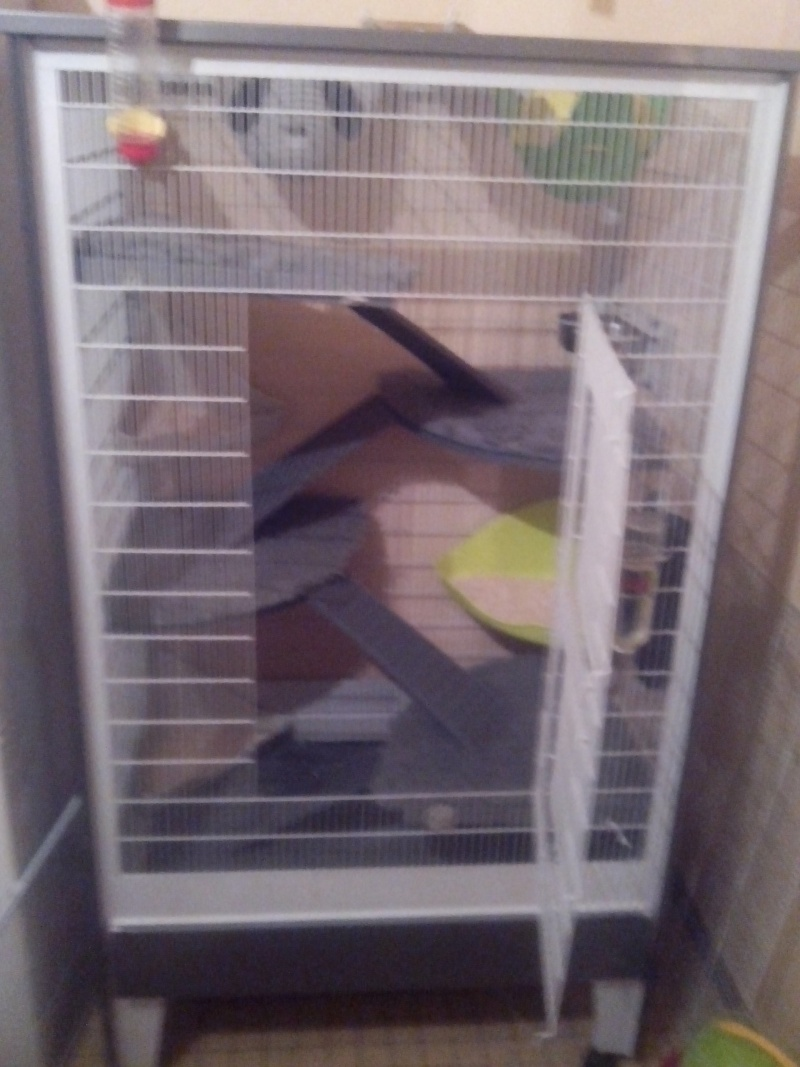 Ma nouvelle cage Img_2039