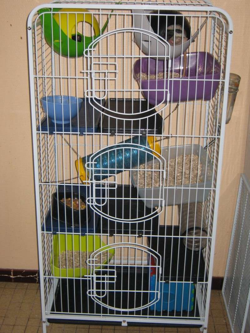 Cage tower XL Voliar14
