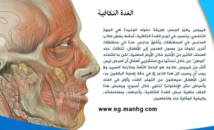 تعرف على مرض الغدة النكافية الذى يهدد الاسرة المصرية 112