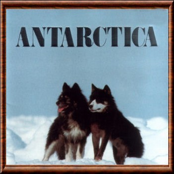 Antarctica   12anta10