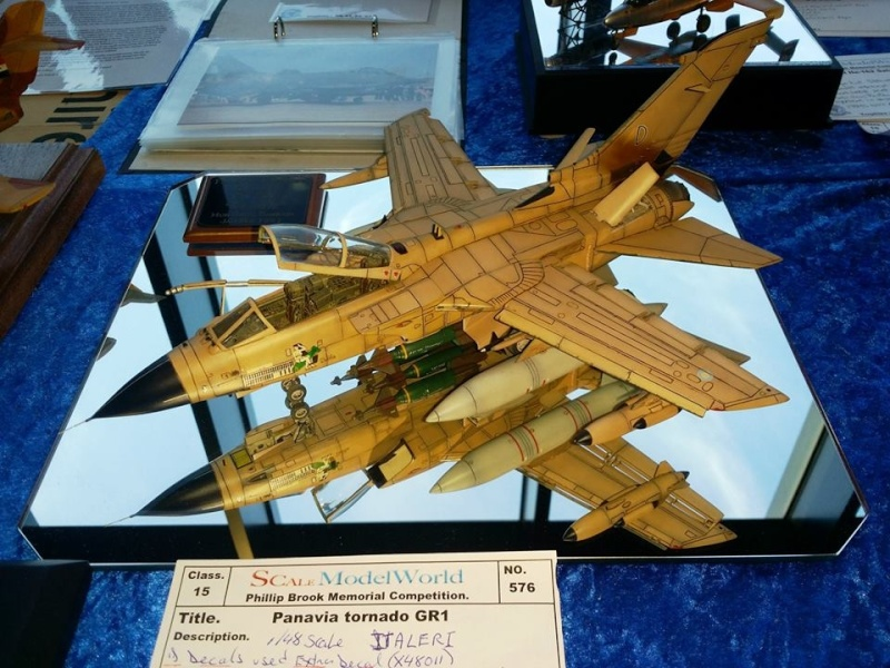 Photos from Scale Model World 2013 14533110