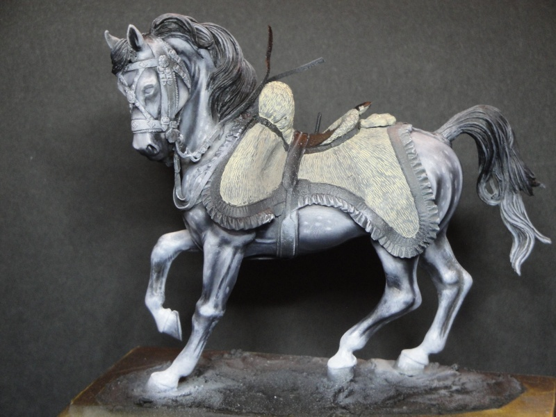 Hussard,Pegaso Models  Dsc01813