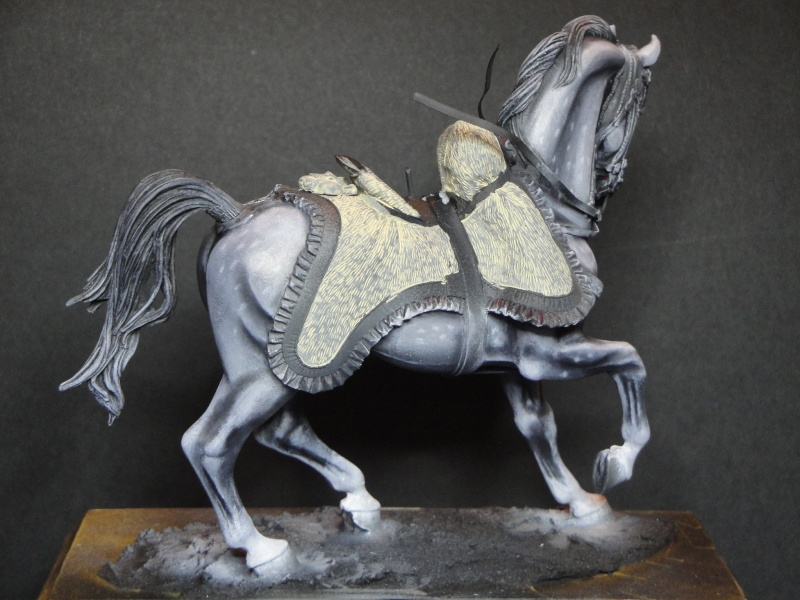 Hussard,Pegaso Models  Dsc01814