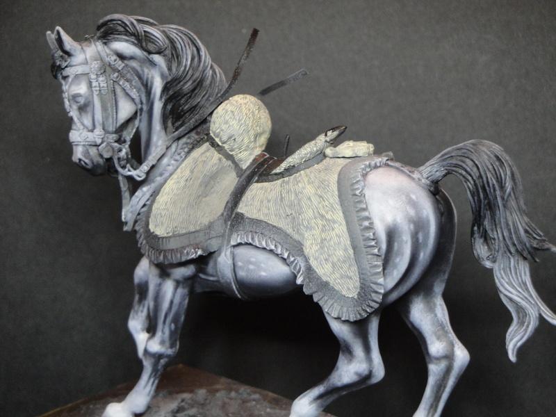 Hussard,Pegaso Models  Dsc01815