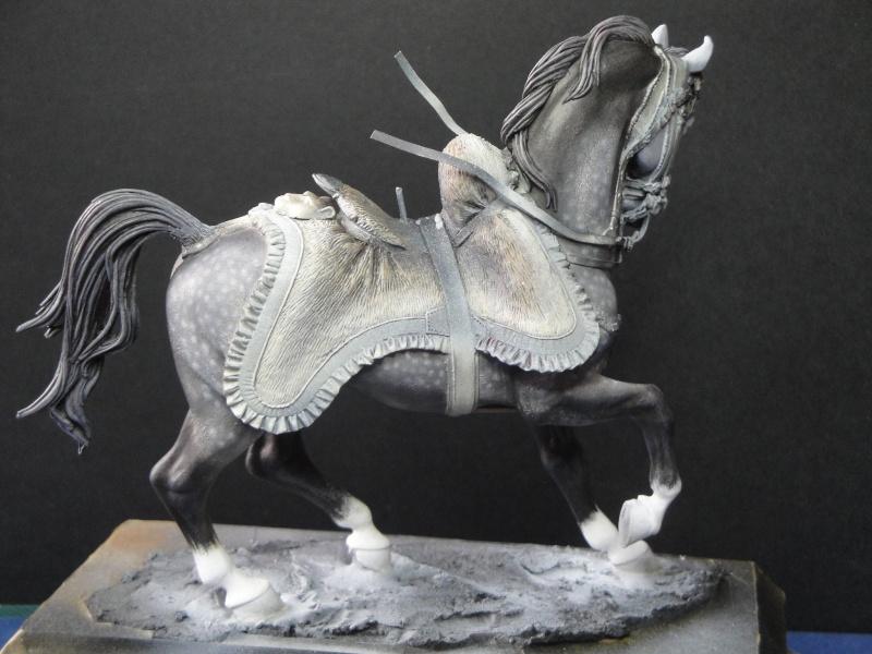 Hussard,Pegaso Models  Dsc01819