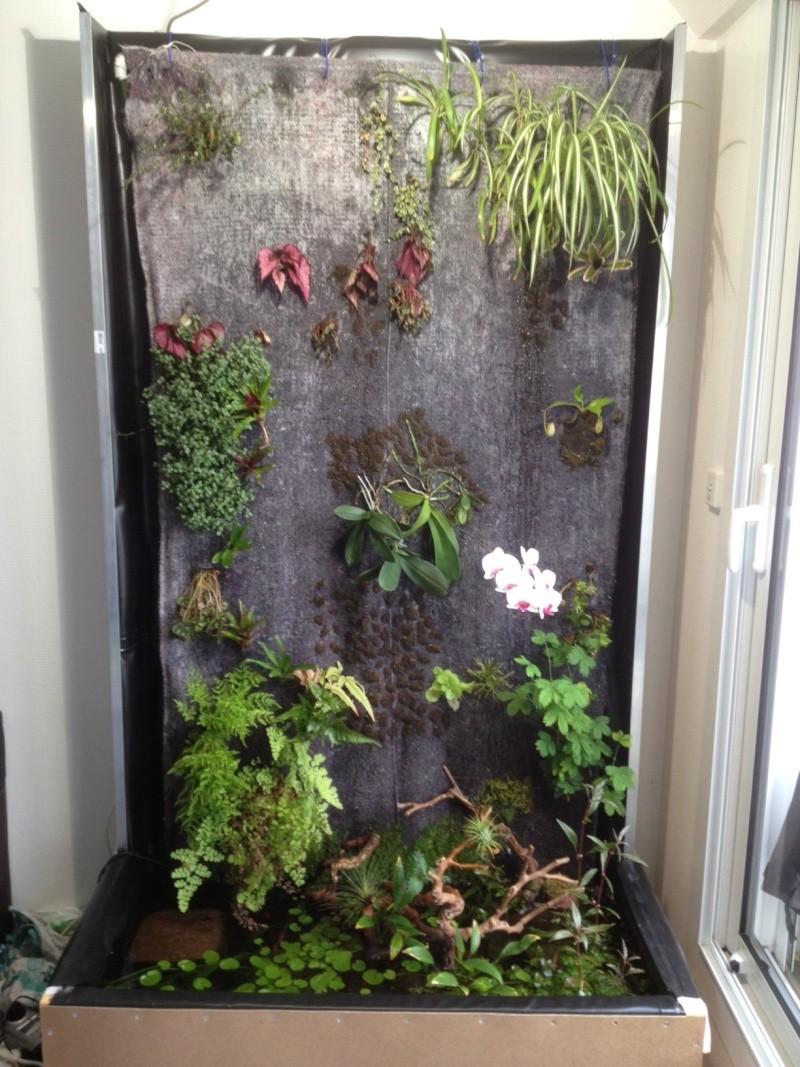 Mur végétal de Nico Mur_212