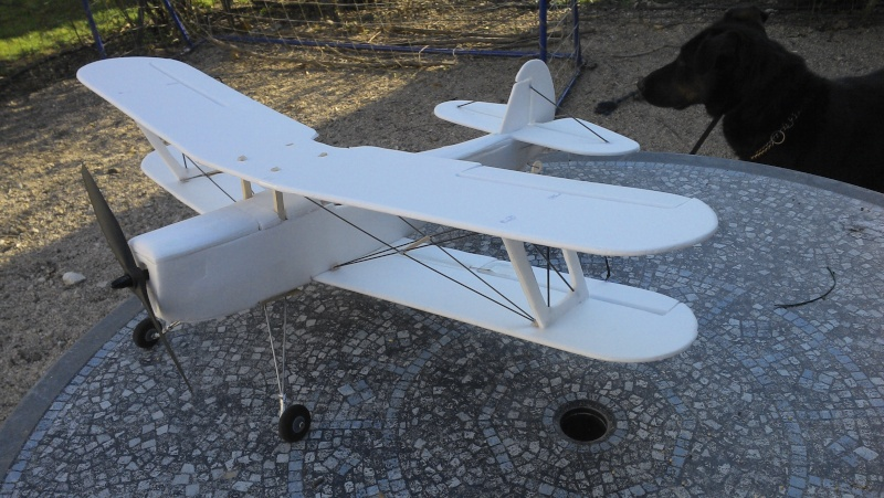 Stampe  - Page 3 Img_2011