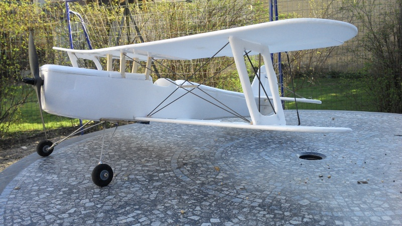 Stampe  - Page 3 Img_2012