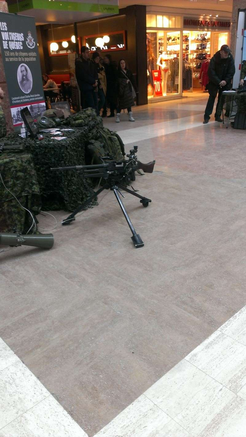 Armée canadienne/Canadian Armed Forces - Page 16 2014-014
