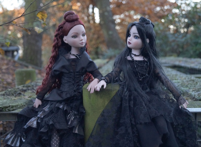 THEME DU MOIS DE NOVEMBRE 2013 : Ellowyne et sa petite robe noire Dsc00112