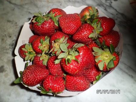la culture du fraisier - Page 7 Sam_3415