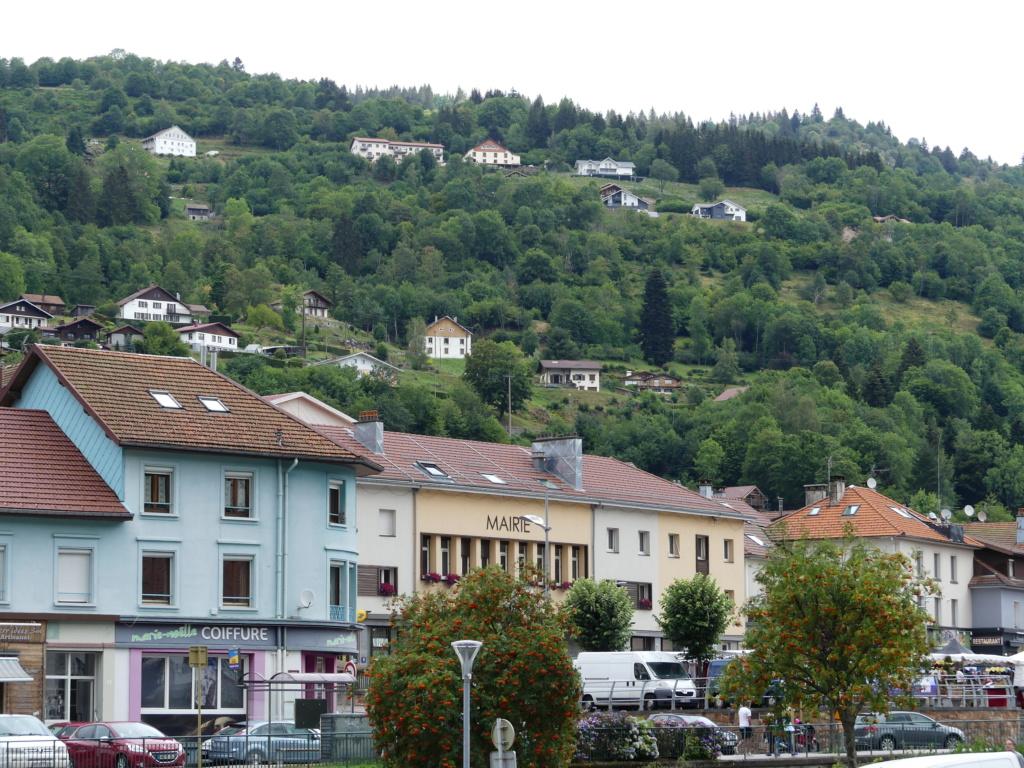 (88)Rassemblement Mensuel Club Rétro Loisirs à La Bresse - Page 13 P1000078