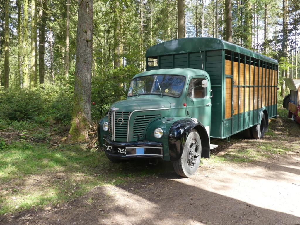(88)[31/07/01/08/21] 2eme exposition vieux camions P1000295