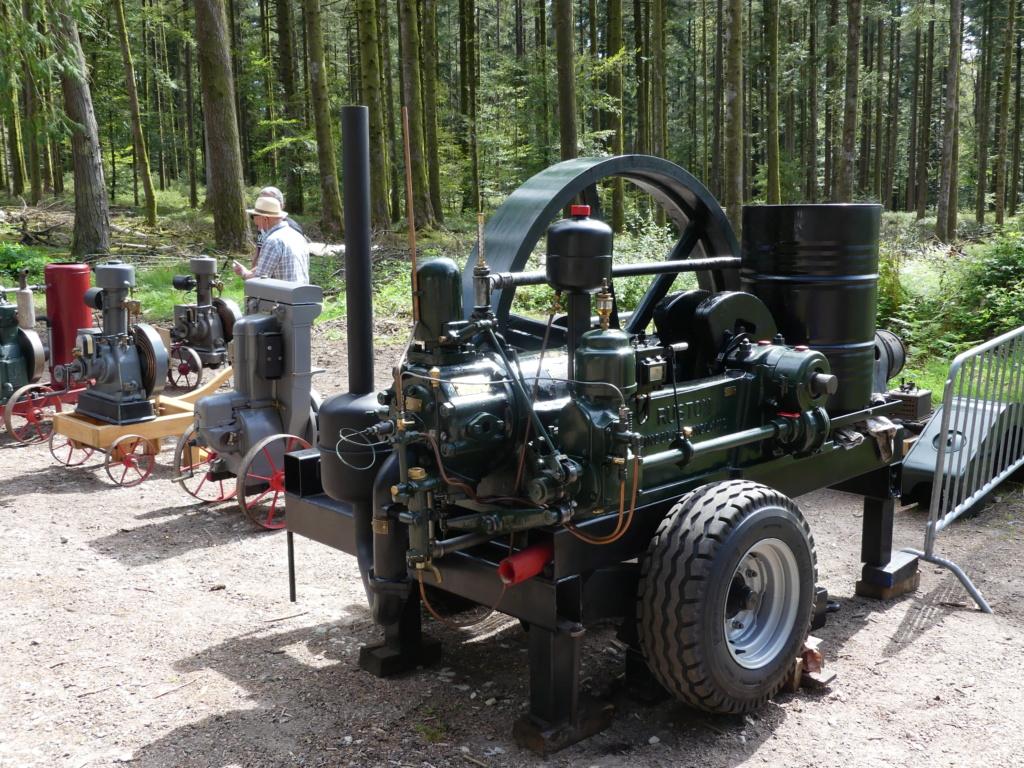 (88)[31/07/01/08/21] 2eme exposition vieux camions P1000400