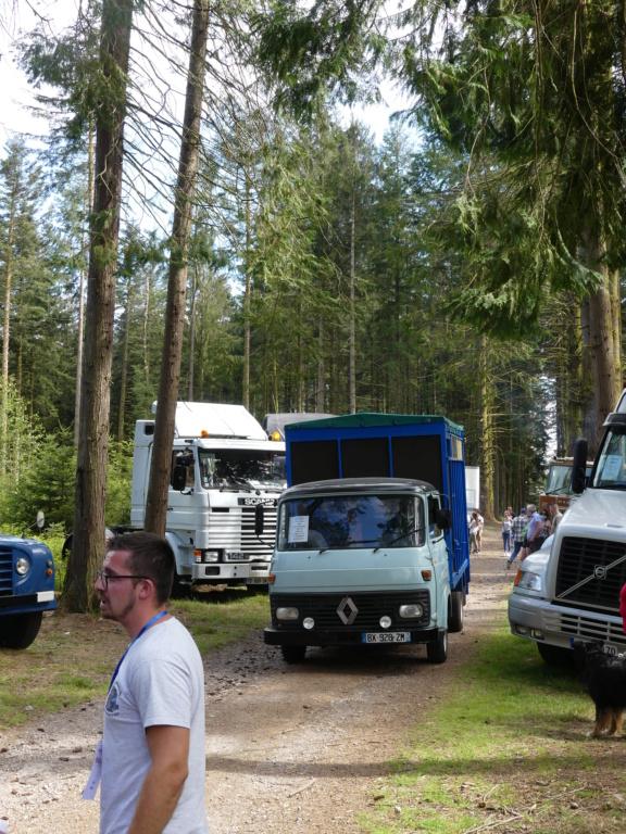 (88)[31/07/01/08/21] 2eme exposition vieux camions P1000404