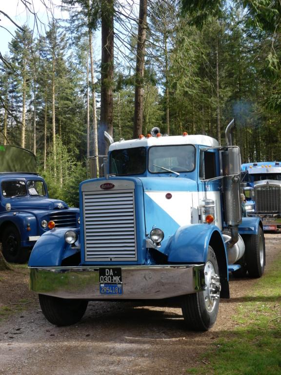 (88)[31/07/01/08/21] 2eme exposition vieux camions P1000408