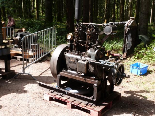 (88) Vieux poids lourds au Val d'Ajol - Page 2 P1200269