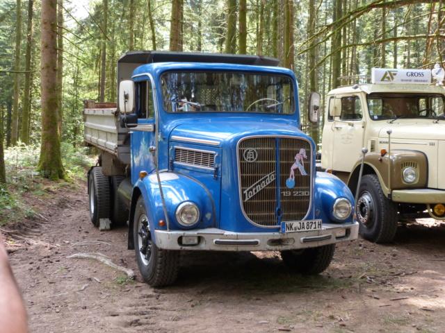 (88) Vieux poids lourds au Val d'Ajol P1200325