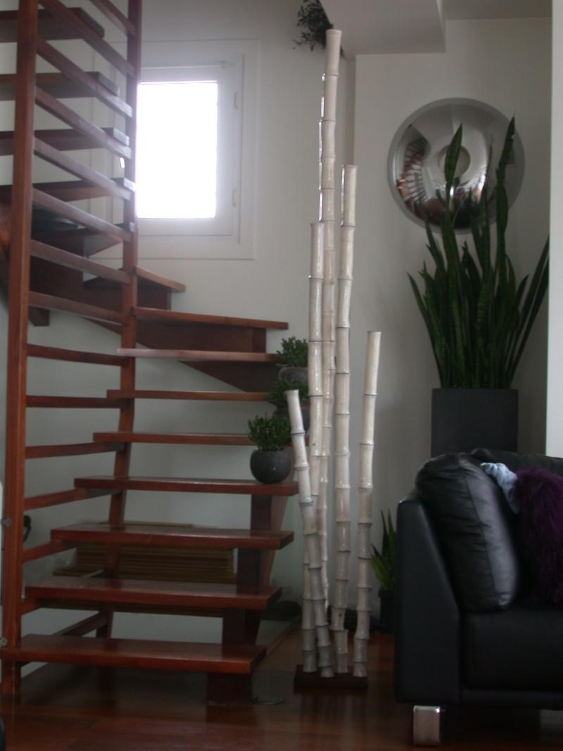 bambou Dscn5510