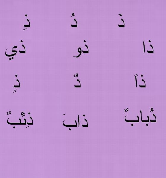 Lalphabet Arabe Dhhhhh10