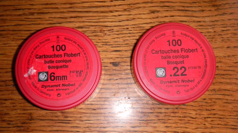 6mm Flobert (ou bosquette) VS 22 Short Dscn0413