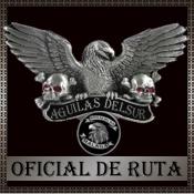 Oficial de Ruta