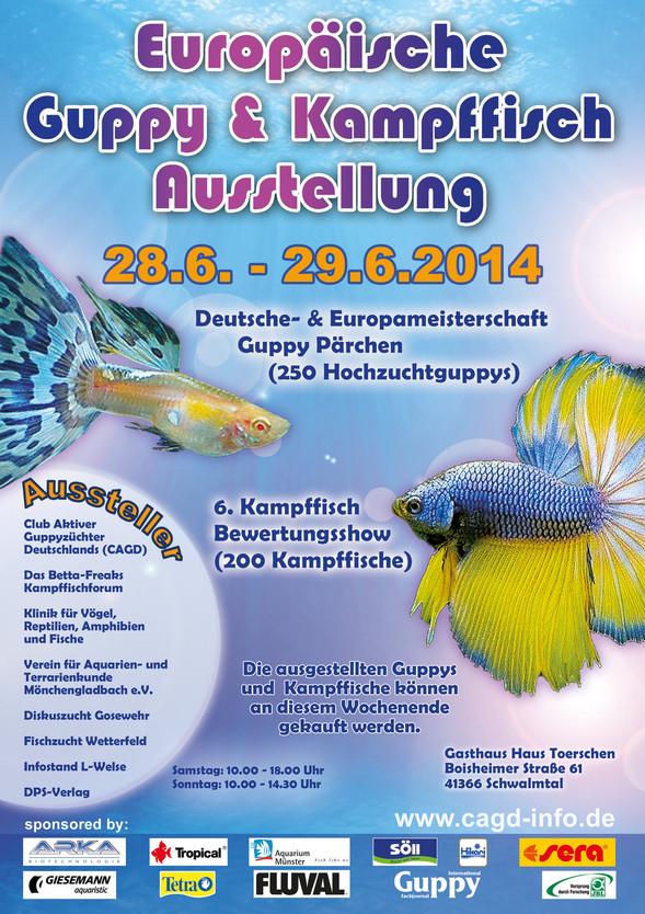 Rencontre CAGD Show Guppys/Bettas à Schwalmtal (Allemagne) Image10