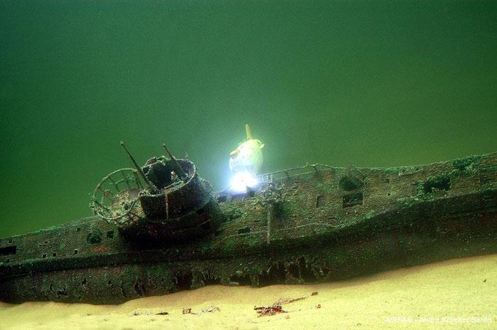 An undersea diorama... Typvii10